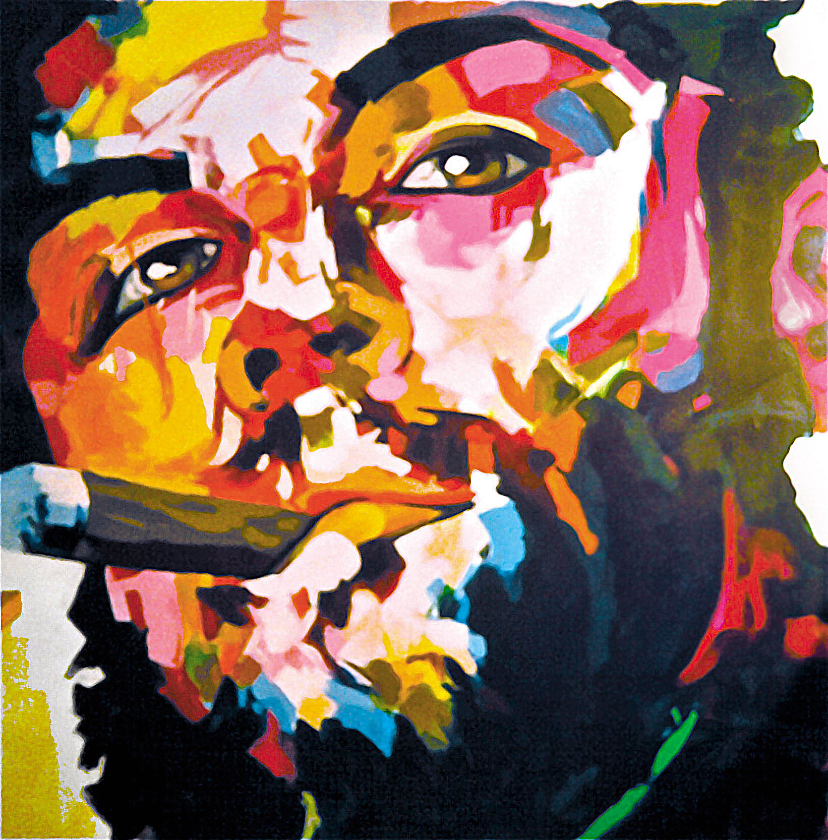 Image of Commainting Che Guevara by Laura Fraser